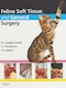 Feline soft tissue and general surgery